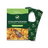 Legona® - Schlupfwespen gegen Lebensmittelmotten / 3X Trigram-Karte à 3...